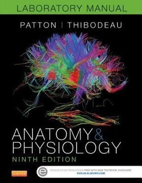 human anatomy and physiology textbook patton lab manual solutions